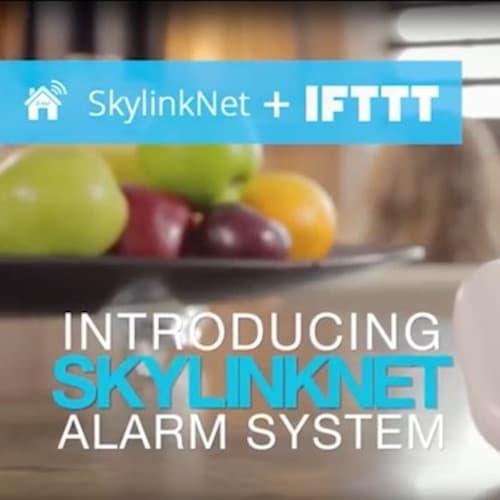 Skylinknet